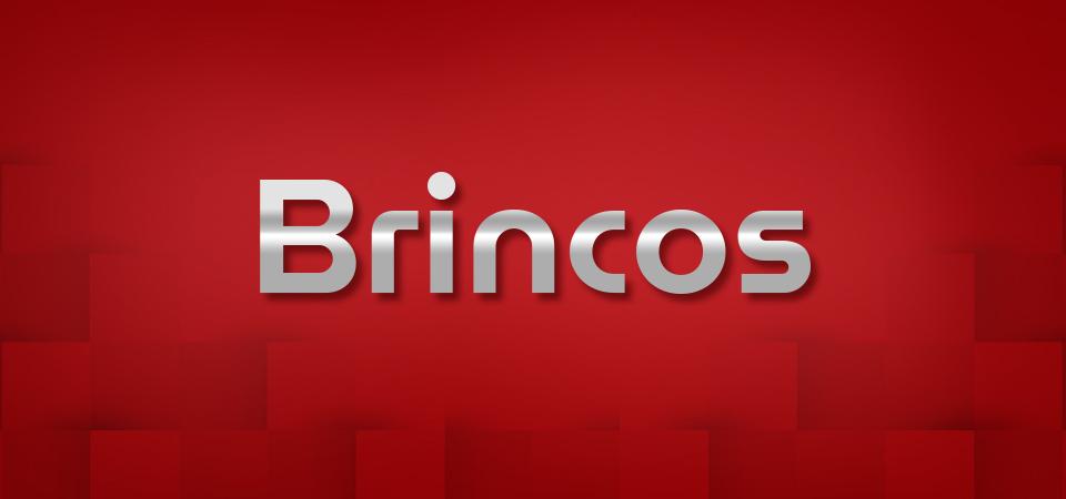 Brincos Man